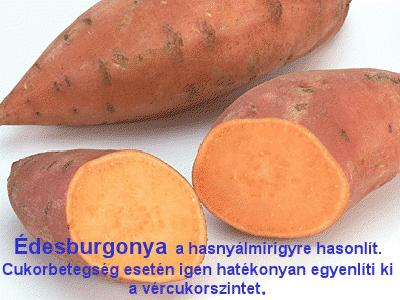 viewerbur.png